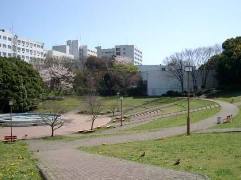 横浜国立大学の外国人入試 TOEFL がカギになる受験! 何がなんでも、まずはTOEFLです!